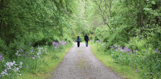 Mahoning Shadow Trail, Punxsutawney